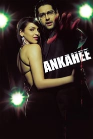 Ankahee 2006 Hindi Movie AMZN WebRip 400mb 480p 1.3GB 720p 4GB 10GB 1080p