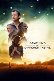 Ver Same Kind of Different as Me (2017) Online Gratis