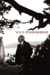 Wild Strawberries 1957