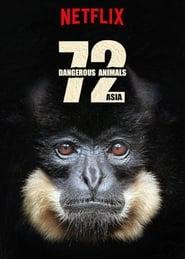 Imagen 72 animales peligrosos Asia
