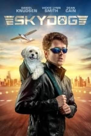 Portada Skydog
