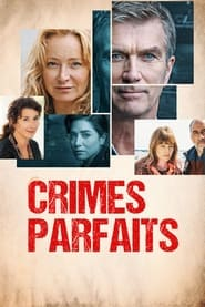 Crimes parfaits 3x3