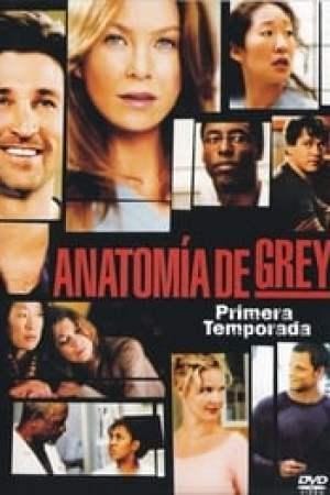 Portada Anatomía de Grey