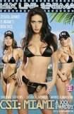 CSI: Miami - A XXX Parody 2010