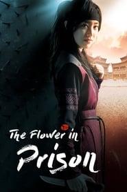 The Flower in Prison