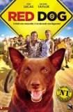 Red Dog 2011