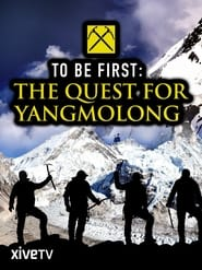 To Be First: The Quest for Yangmolong Online