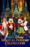 The Wonderful World of Disney: Magical Holiday Celebration 2016