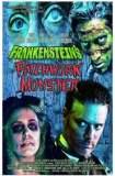 Frankenstein's Patchwork Monster 2015
