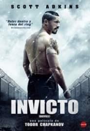 Boyka: Invicto IV Portada