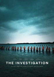 img The Investigation