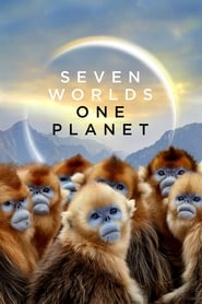 Siete mundos, un planeta