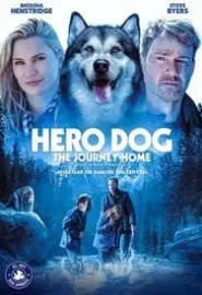 Hero Dog: The Journey Home Portada