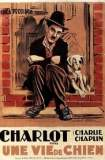 Une vie de chien 1918