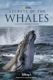 poster Secrets of the Whales