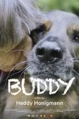 Buddy 2019