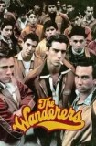 The Wanderers 1979