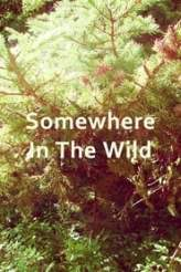 Somewhere in the Wild 2017