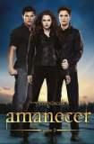 La saga Crepúsculo:  Amanecer - Parte 2 2012