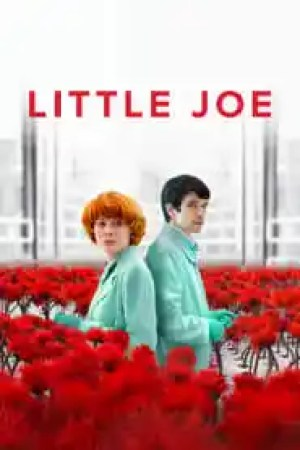 Portada Little Joe