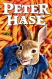 Peter Hase 2018