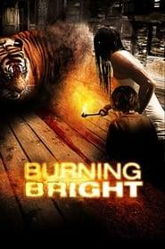 poster Burning Bright