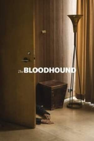 Portada The Bloodhound