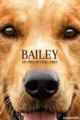 Bailey – Ein Freund fürs Leben 2017