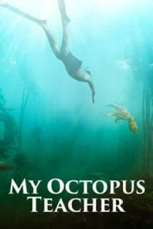 Portada My Octopus Teacher