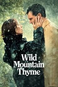 Image Wild Mountain Thyme