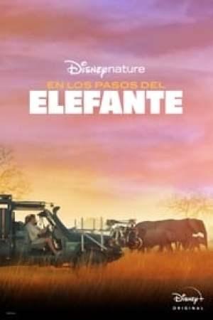 Portada Tras los pasos del elefante