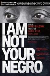 I Am Not Your Negro 2017