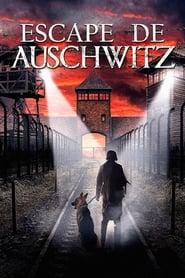img Escape de Auschwitz