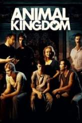 Animal Kingdom 2010