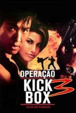 Operação Kickbox 3 - Sem Retorno Torrent (1995) Dual Áudio / Dublado BluRay 1080p – Download