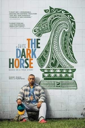 Image The Dark Horse