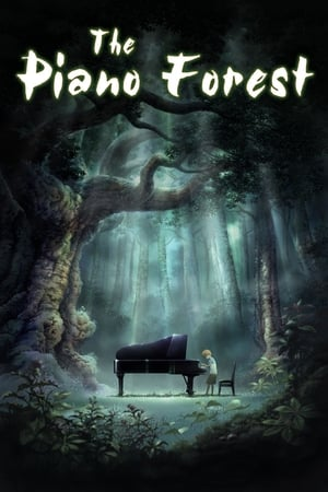 Image Piano Forest