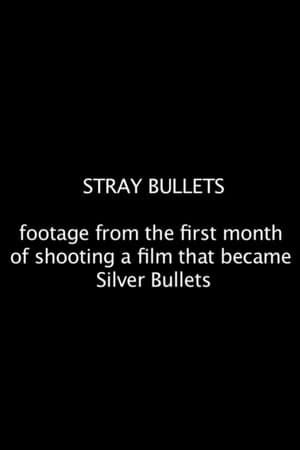 Image Stray Bullets