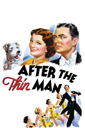 Image After the Thin Man