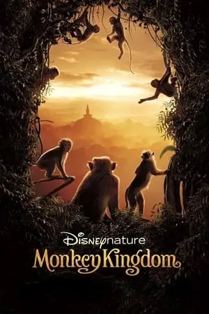 Image Monkey Kingdom