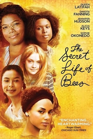 Image The Secret Life of Bees