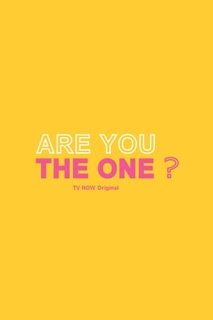 Image Are You The One?