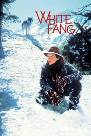 Image White Fang
