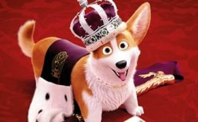 Assistir Corgi Top Dog Dublado Online Mega Filme Completo Online Cute766