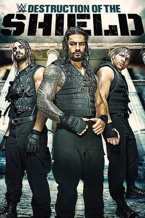 Image WWE: The Destruction Of The Shield