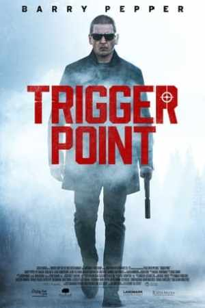 Image Trigger Point