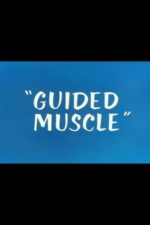 Image Guided Muscle