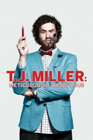 Image T.J. Miller: Meticulously Ridiculous