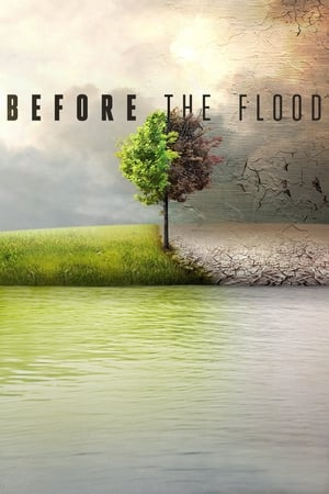 Image Before the Flood