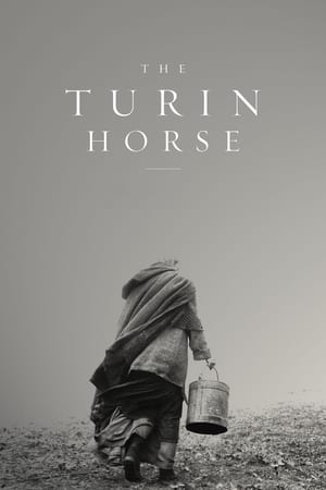 Image The Turin Horse